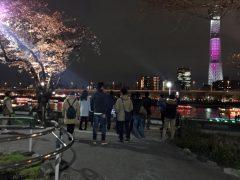 2018年隅田公園の夜桜その2