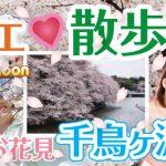 千鳥ヶ淵皇居カフェ散歩イベント