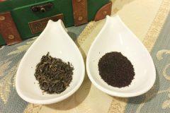 茶葉の違い